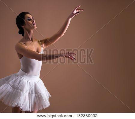 Young Beautiful Woman Ballet Dancer Dancing In Tutu
