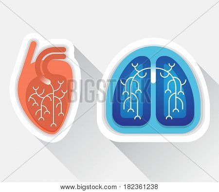 Human lungs and heart flat illustration - health concept, silhouette with shadows