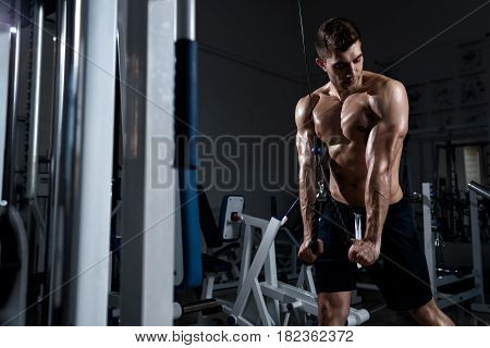 A young muscular man with a naked torso trains a triceps on a exercise machine in the gym