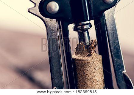 Cork And Corkscrewer