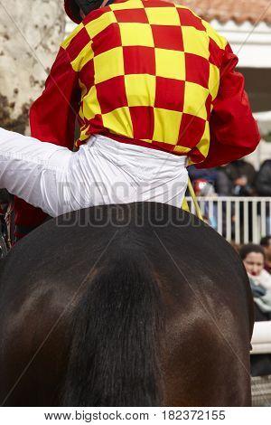 Race horse with jockey ready to run. Paddock area. Vertical
