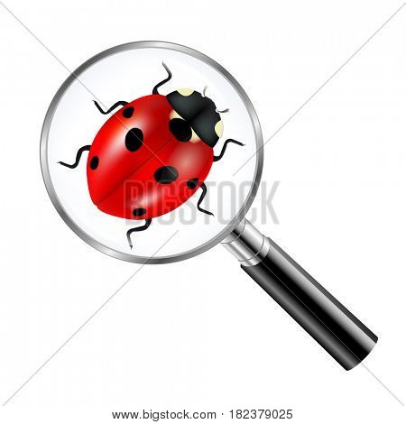 Black Magnifying Glass With Ladybug