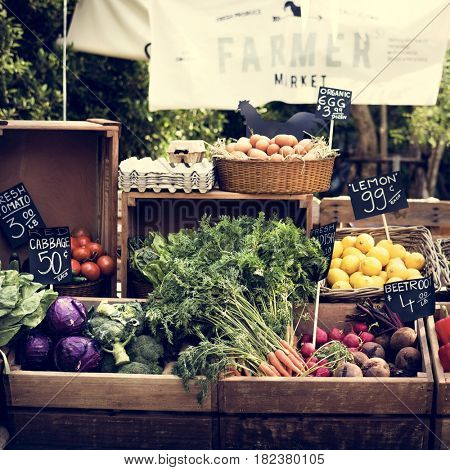 Fresh Local Organic Vegetable at Farmers Market