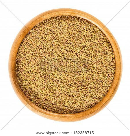 Alfalfa seeds in wooden bowl. Lucerne, Medicago sativa. Used for sprouting and germinating with water in a jar for consumption. Isolated macro food photo close up from above on white background.