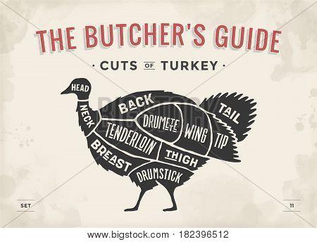 Cut of meat set. Poster Butcher diagram, scheme - Turkey. Vintage typographic hand-drawn turkey silhouette for butcher shop, restaurant menu, graphic design. Meat, poultry theme. Vector Illustration