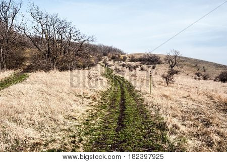 early spring Palava mountains bellow Devin hill with meadows isolated trees red marked hiking trail and blue sky in South Moravia