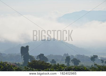 pagoda on top of mountain cover by mist and cloudy