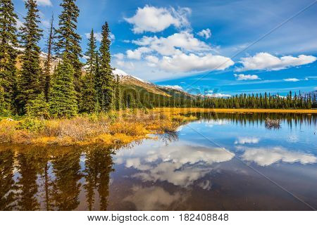 Shallow lakes surrounded by pine forest. Rocky Mountains on a sunny autumn day. The concept of active tourism and ecotourism