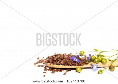 spoon of flax seeds and dry flax plant isolated on white background