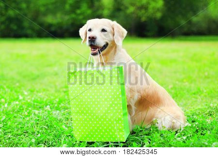 Beautiful Golden Retriever Dog Is Holding A Green Shopping Bag In The Teeth On A Grass On A Summer D