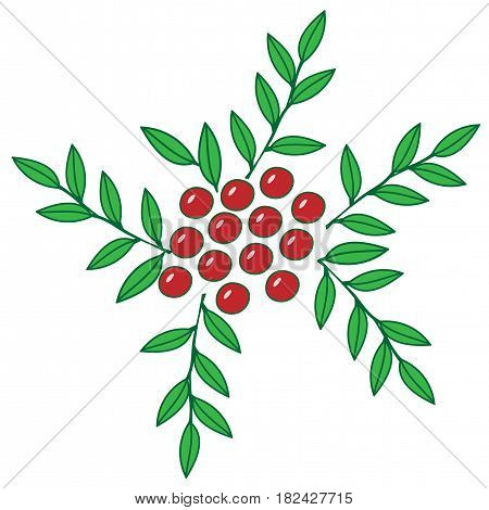 Colorful rowan with leaf isolated on the white background.Red berry with green leaf for print coloring book and page.