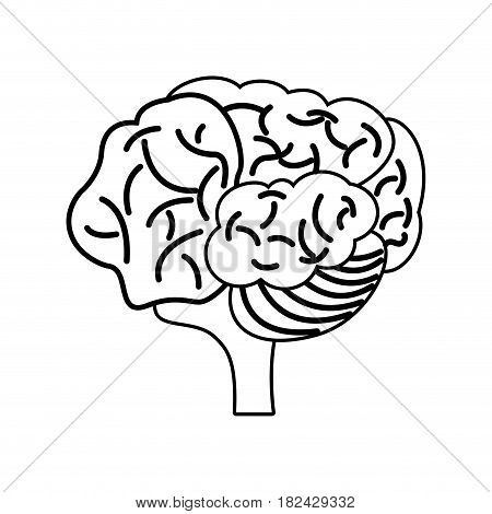 brain mind mental outline vector illustration eps 10