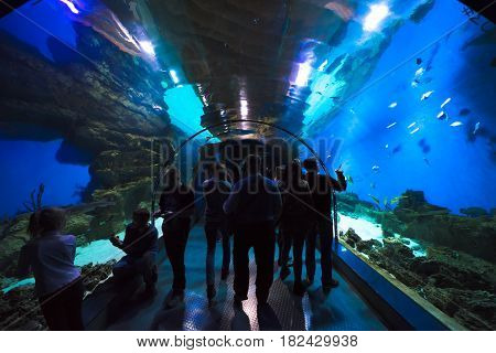 Moscow, Russia - April 16, 2017: Moskvarium Oceanography and Marine Biology Center at Moscow's VDNKh Exhibition Center. Oceanarium tunnel, closeup. People walk along the tunnel in the oceanarium