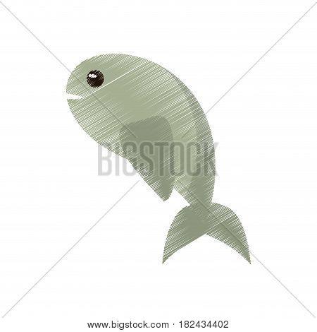 drawing fish miracle symbol image vector illustration eps 10