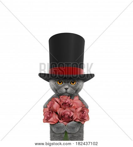 Cat in a high hat cylinder with roses -- isolated on white