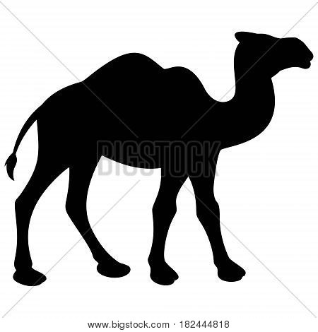 A vector illustration of a silhouette of a Camel.