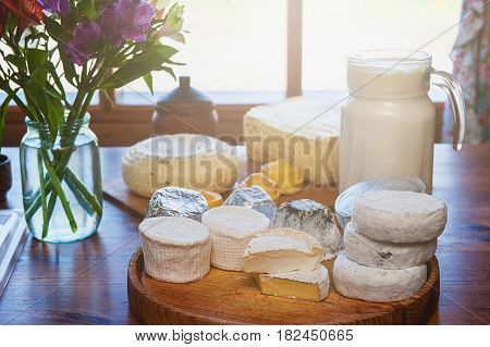 Set of different cheese: camembert, croton, mozzarella, smoked mozzarella and other