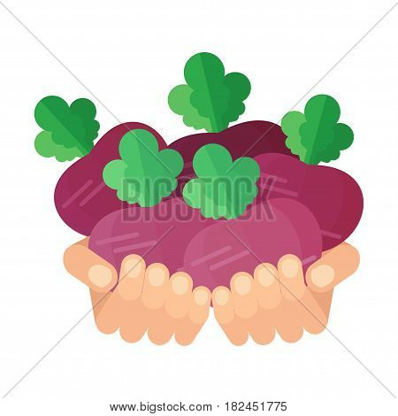 Hands With Beets