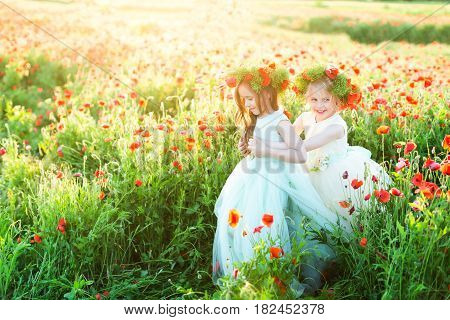 little girl, model, wedding, poppies, fairytale, spring, concept - play of two girls in magnificent dresses in a sunny field of poppies, two smiling princesses in wreaths of summer flowers, hold hands