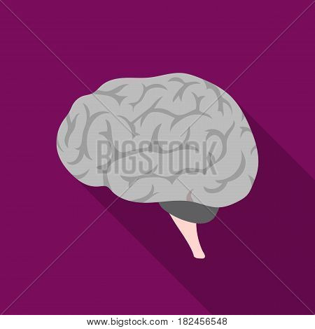 Brain icon in flat style isolated on white background. Organs symbol vector illustration.