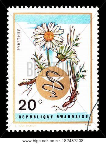 RWANDA - CIRCA 1969 : Cancelled postage stamp printed by Rwanda, that shows Camomile.
