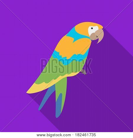 Pirate's parrot icon in flat style isolated on white background. Pirates symbol vector illustration.