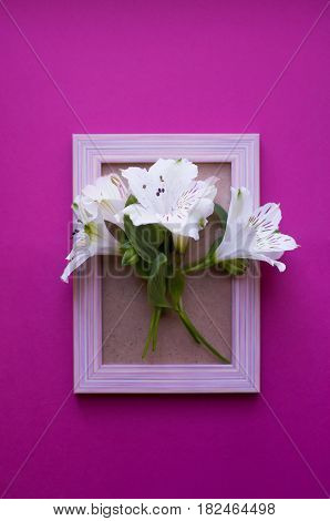 Empty Photo Frame With Bouquet Of White Alstroemeria On Crimson Background