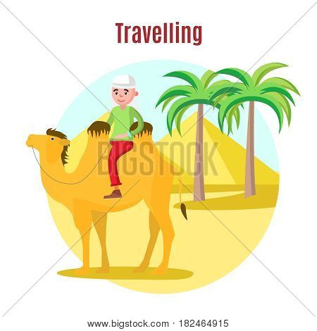 Summer vacation template with happy tourist riding camel on desert landscape with palms and pyramids vector illustration