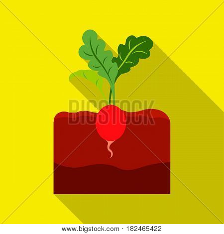 Radish icon flat. Single plant icon from the big farm, garden, agriculture flat.