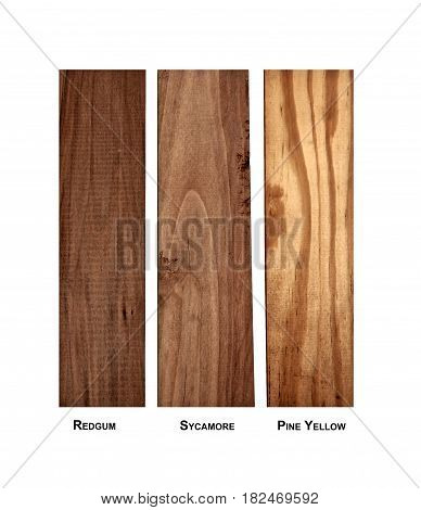 Eastern North America wood samples- Redgum, Sycamore and Pine-yellow