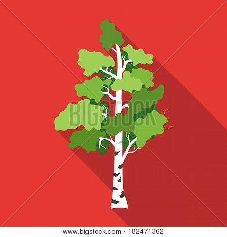 Birch tree icon in flat design isolated on white background. Russian country symbol stock vector illustration.