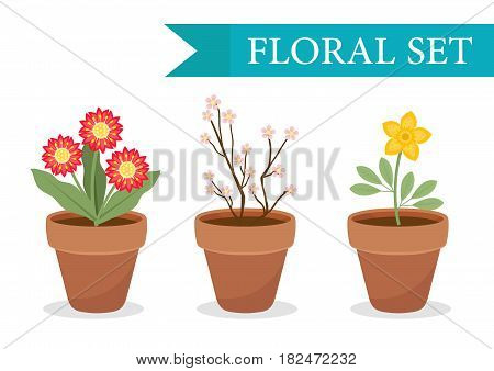 Flower pot with different flowers set, flat style. Flowerpot Collection isolated on white background. Vector illustration, clip art