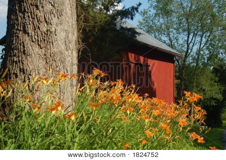 Country Side Barn