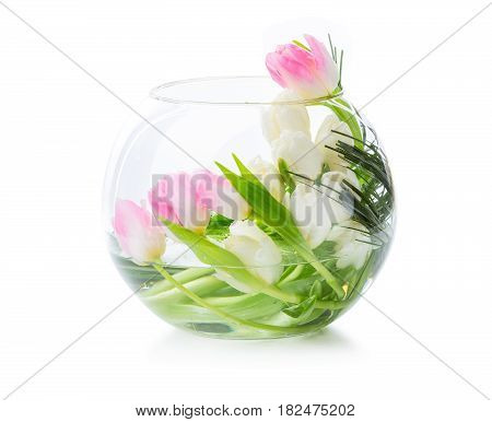 Pink and white tulips in glass vase over white background