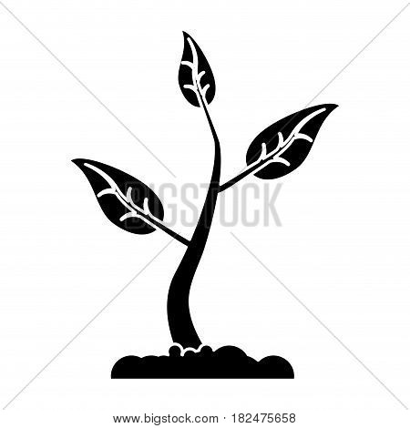 sprout growing plant eco pictogram vector illustration eps 10