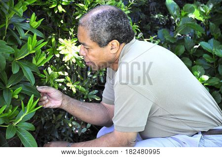 African american male senior expressions alone outdoors.