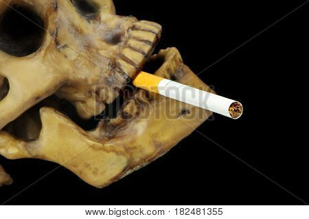 Smoking kills or Stop smoking conceptual image with skull