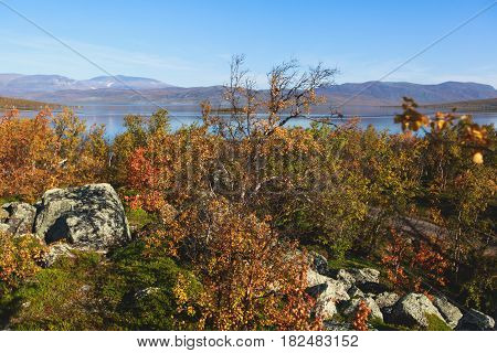 Beautiful vibrant autumn fall view of famous Abisko National Park, Sweden
