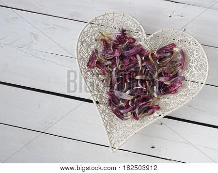 Heart shape of tulip leaves on a rustic white barn wood plank