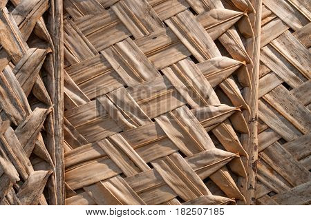 Primitive thatch of palm leaves in hot countries, twiggen wall or ceiling