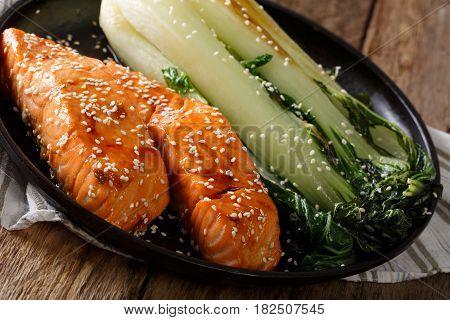 Soy-Honey Glazed salmon close up on plate horizontal