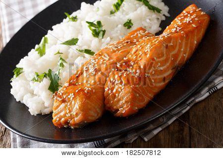 Soy-Honey Glazed salmon close up and rice