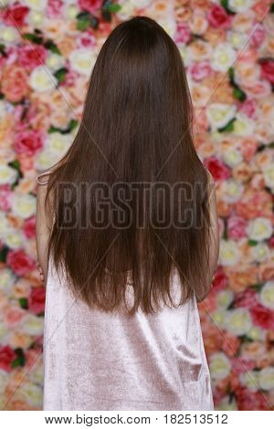 Female Long brunette hair, rear view, on studio wall background