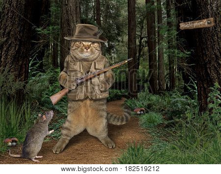 The brave cat is holding a real gun in the forest. He wears hunting hat and vest. There is a rat next to him.