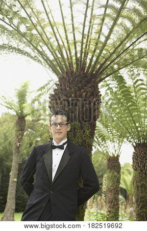 Portrait of man in tuxedo leaning against palm tree