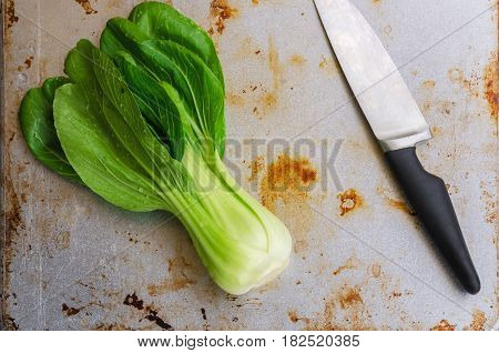 Bok choy with chef´s knife on vintage metal background. Pak choy is a type of Chinese cabbage(Qing geng cai )and one of the healthiest vegetable and popular superfood.