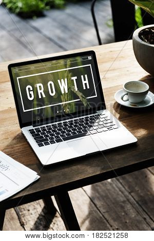 Growth Development Grow Improvement Success