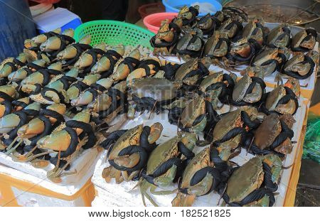 Fresh crabs sold at a local market. CHO HOM market is an old fashioned local market.