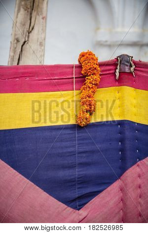 A discarded flower garland in Durbar Square Kathmandu. Flower garlands are an important part of hindu worship.