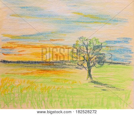 Lonely tree lit by the rays of the setting sun. Painting